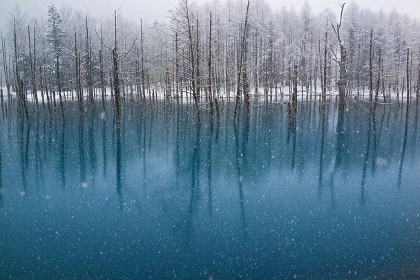 fotos viajantes neve[7]