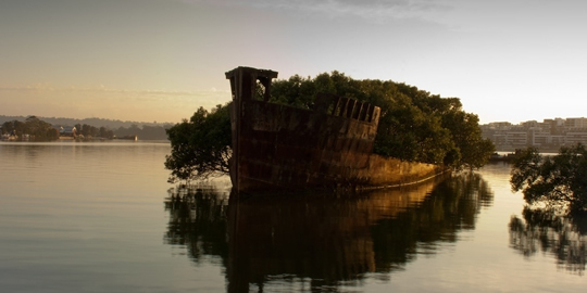 Os restos do SS Ayrfield em Homebush Bay, Austrália