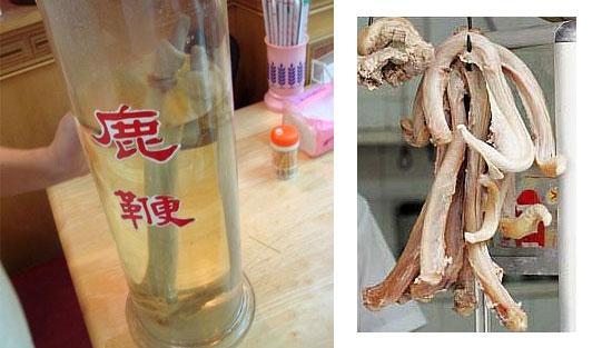 Vinho de pinto de veado