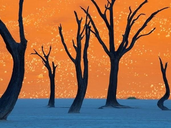 07 - Namibia
