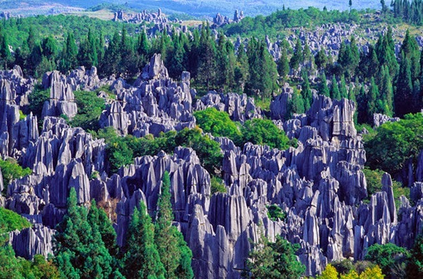 16 - The Stone Forest - Yunnan China
