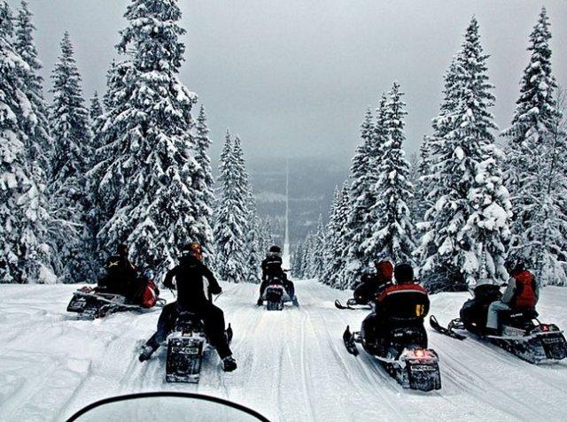 Noruega e Suécia - Inúmeras árvores foram retiradas, formando um longo caminho que divide os dois países.